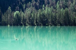 The smooth surface of Lago di Landro made pretty reflections of the surrounding trees.